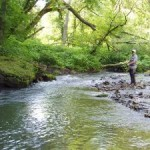 Fishing In Scotland: The Ultimate Angling Experience