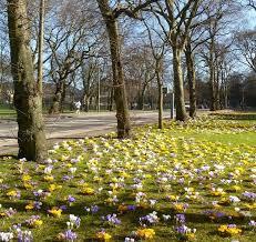 Scotland in Spring