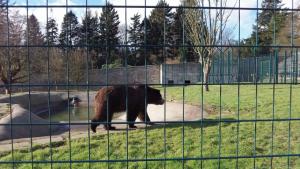 Camperdown Wildlife Centre