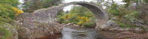 Packhorse |Bridge
